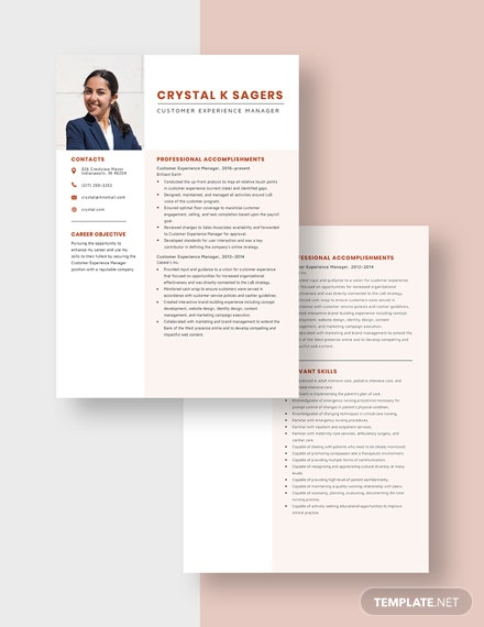 Customer Experience Manager Resume Download