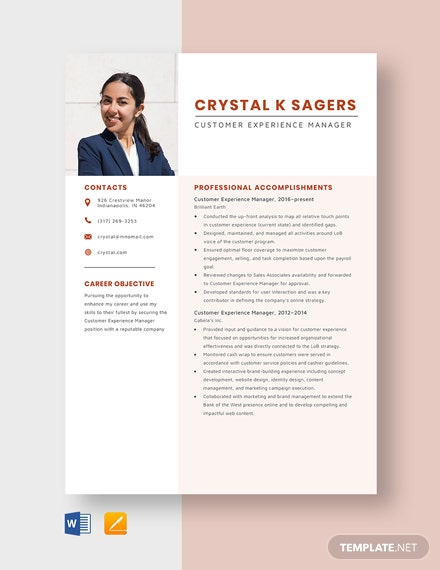 Customer Experience Manager Resume Template