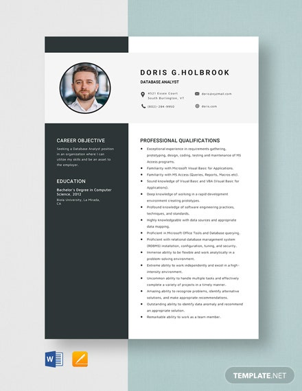 Database Analyst Resume Template