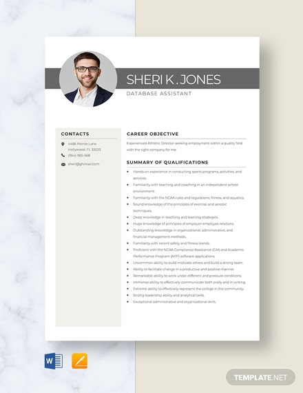 Database Assistant Resume Template