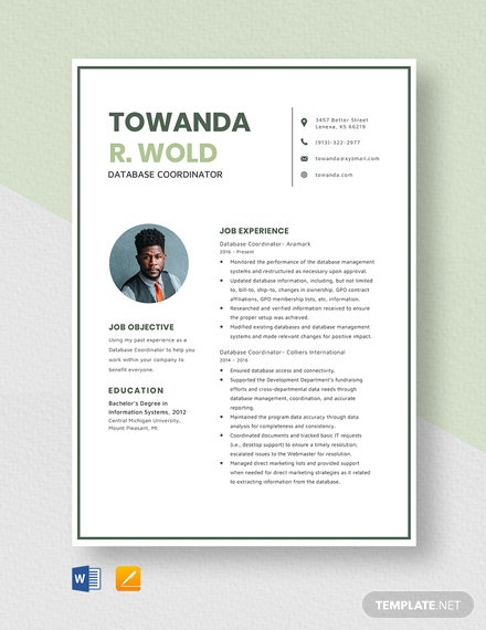 Database Coordinator Resume Template