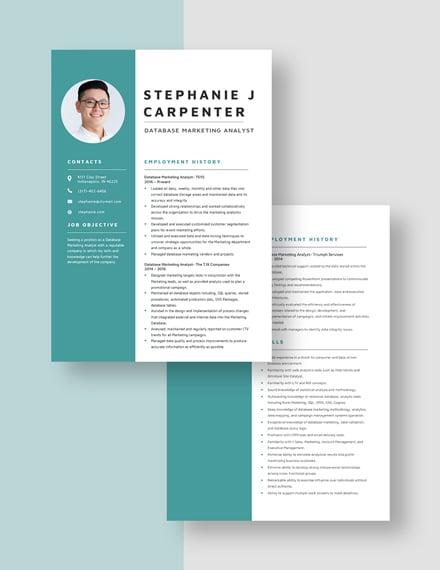Database Marketing Analyst Resume Download