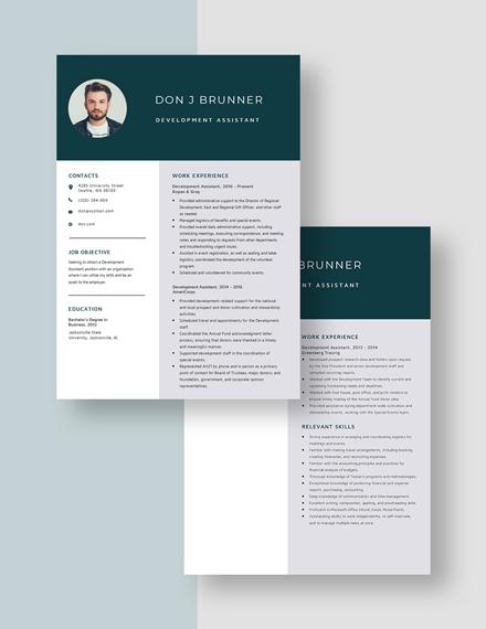 Development Assistant Resume Download