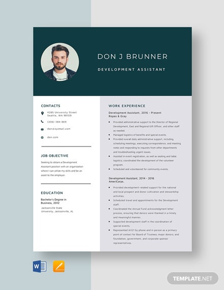Development Assistant Resume Template