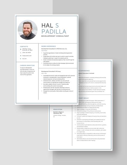 Development Consultant Resume Download