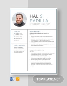 Development Consultant Resume Template