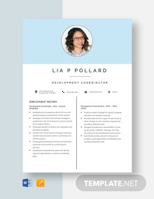 Development Coordinator Resume Template