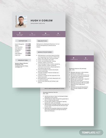 Development Executive Resume Download