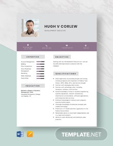Development Executive Resume Template
