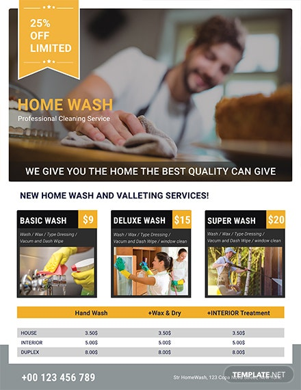 Free Professional Cleaning Services Flyer Template