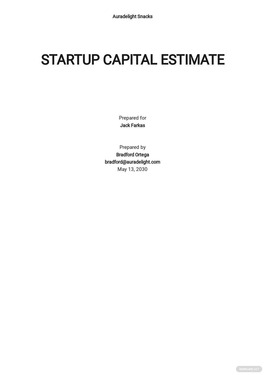 Blank Startup Capital Estimate Template