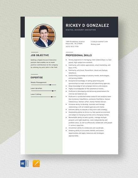 Digital Account Executive Resume Template