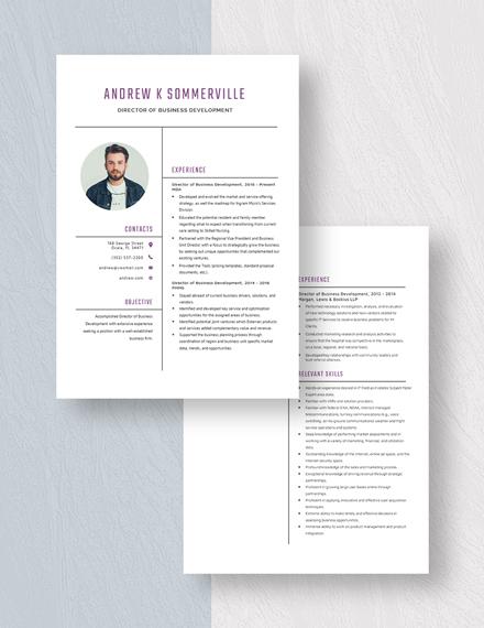 Director of Business Development Resume Download