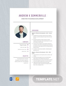 Director of Business Development Resume Template