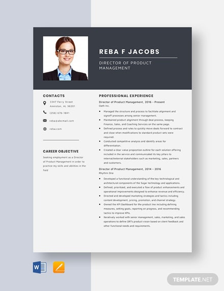 Director of Product Management Resume Template