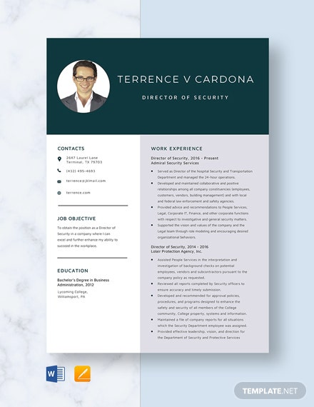 Director of Security Resume Template