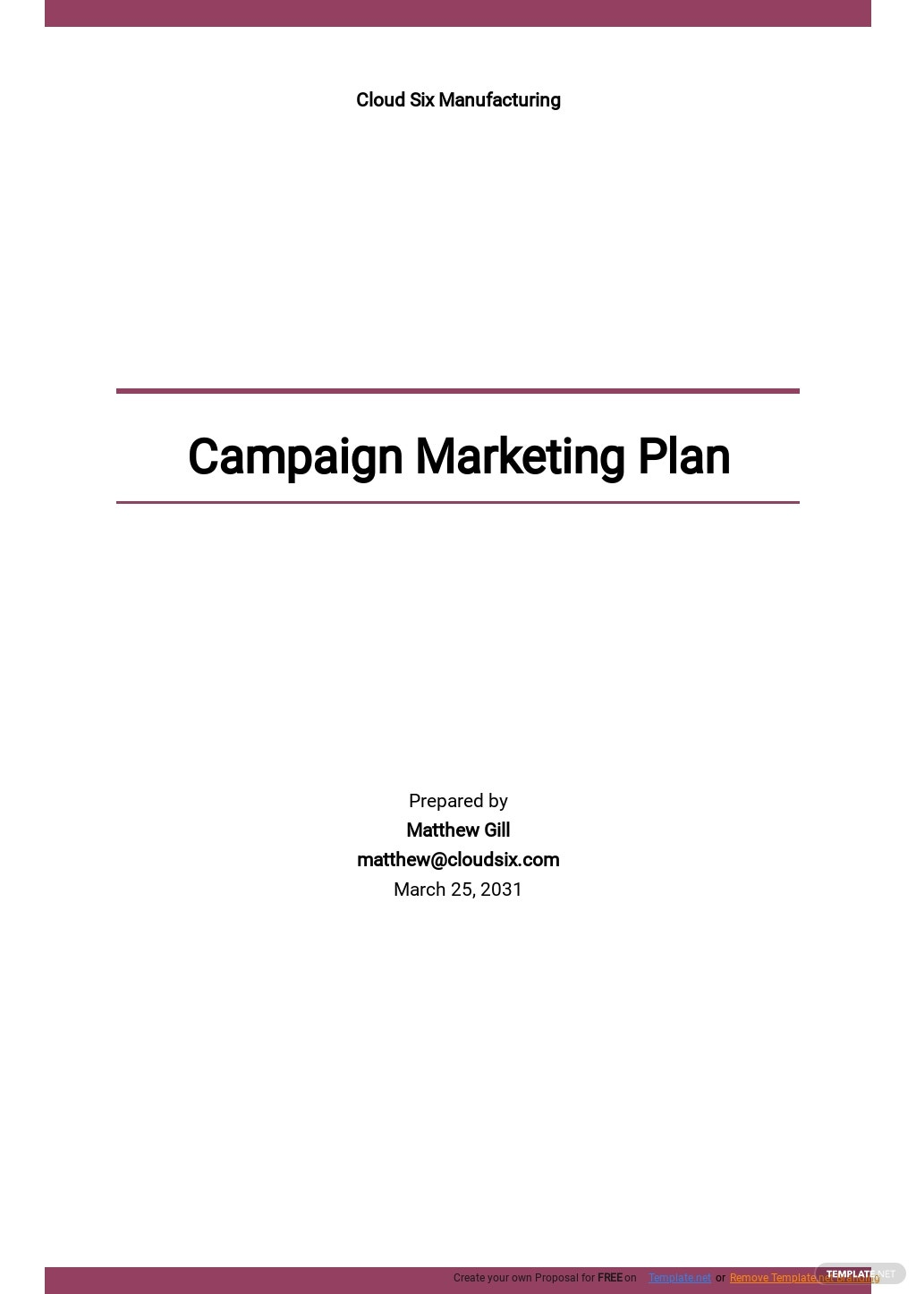 Campaign Marketing Plan Template