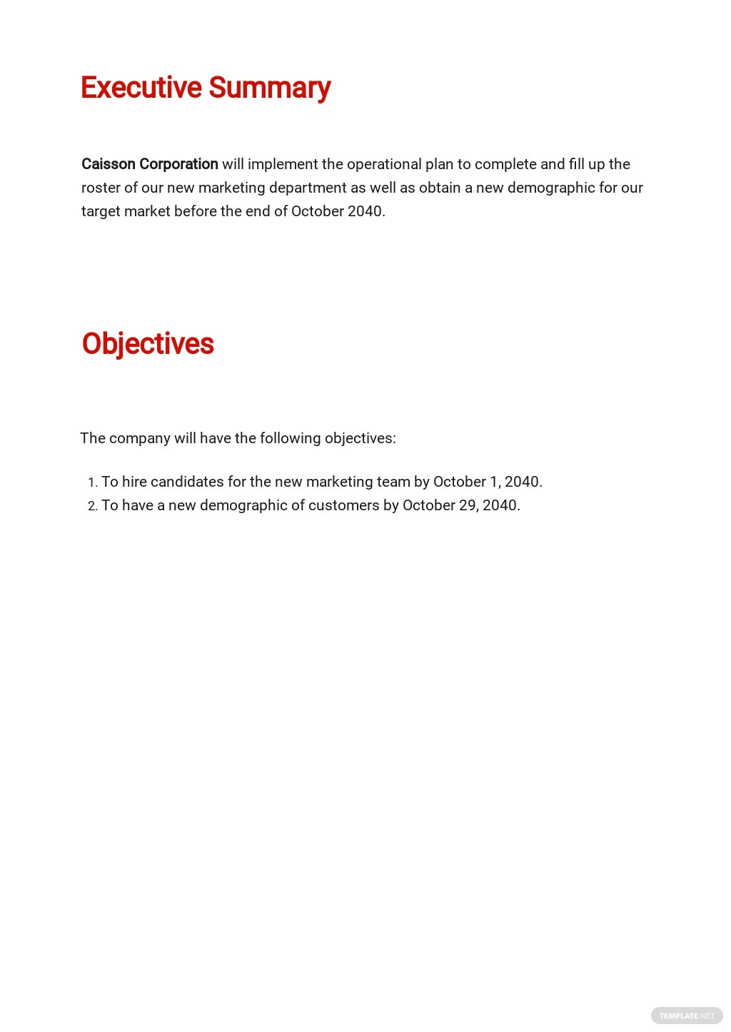 Company Operational Plan Template 1.jpe