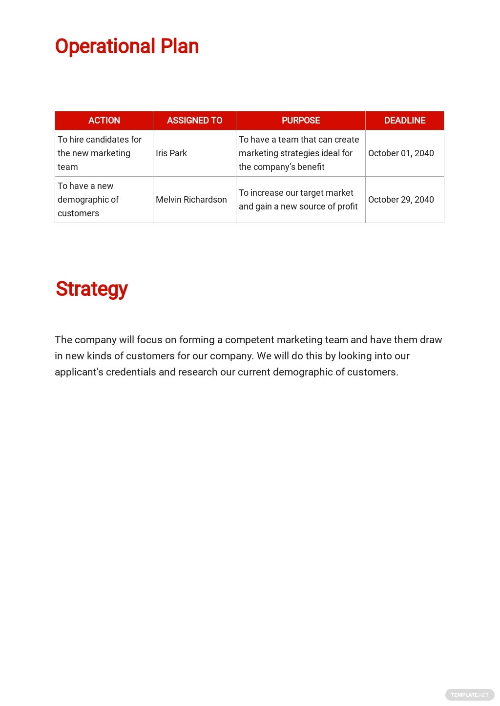 Company Operational Plan Template 2.jpe