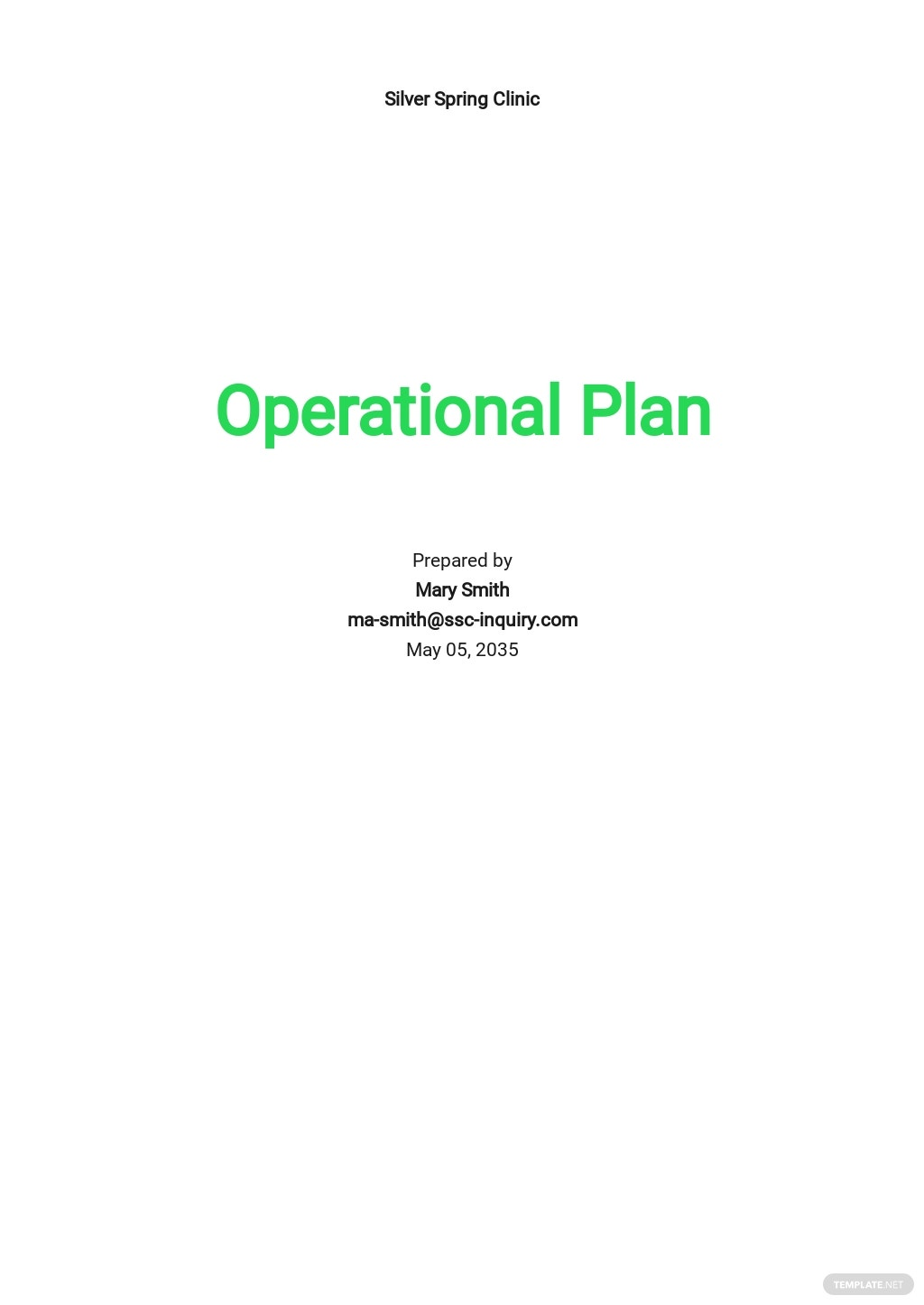 Healthcare Operational Plan Template
