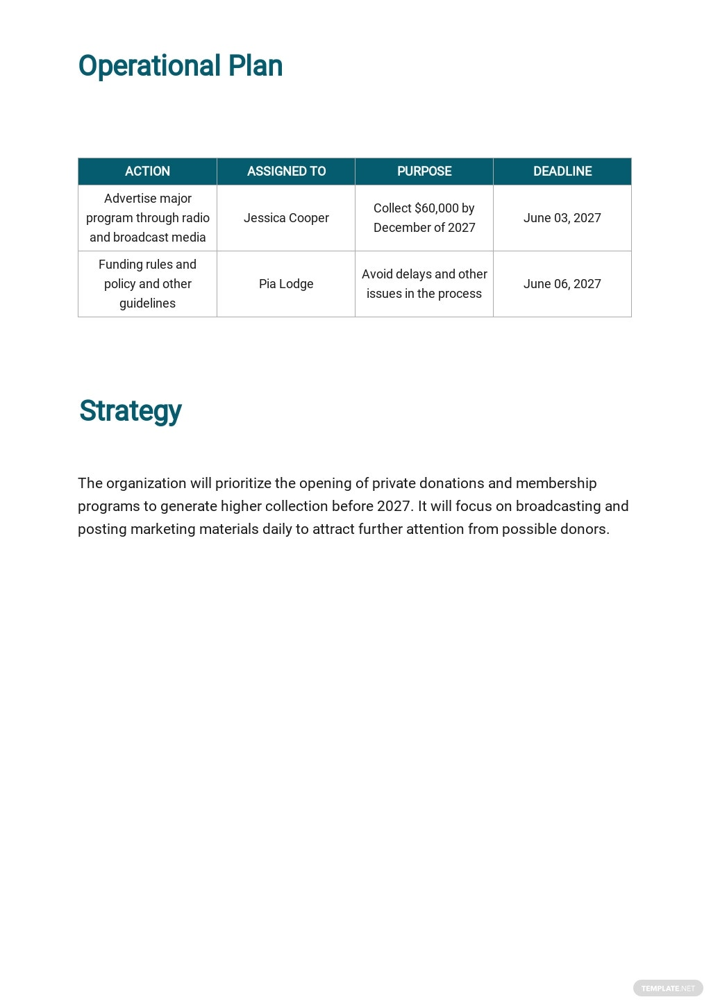 NGO Operational Plan Template 2.jpe