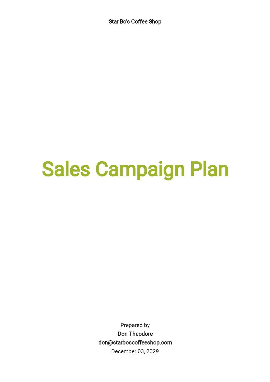 Sales Campaign Plan Template