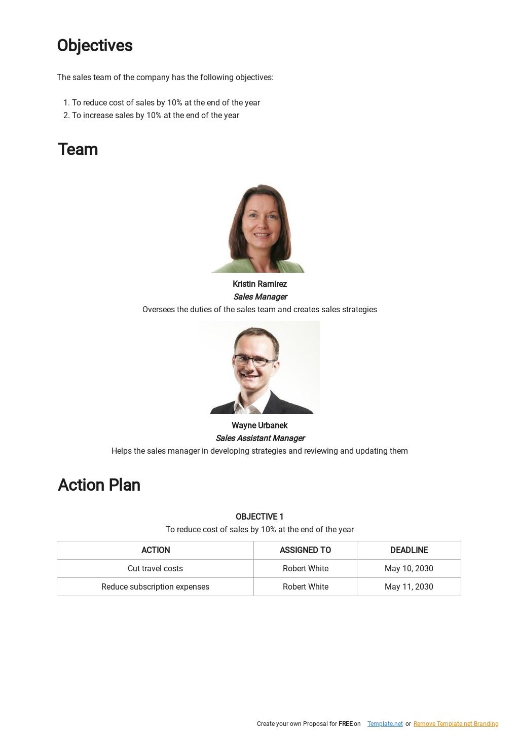 Sales Team Action Plan Template 1.jpe