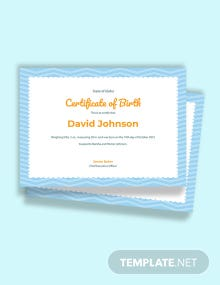 Free Boy Birth Certificate Template