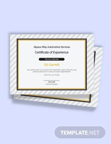 Free Car Workshop Experience Certificate Template