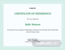 Free Employee Experience Certificate Template