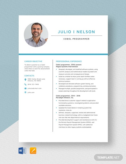 asp net programmer resume template  download 1815  resumes in microsoft word  apple pages