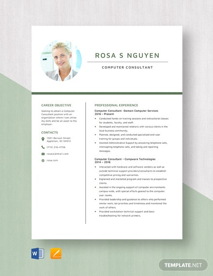 Computer Consultant Resume Template