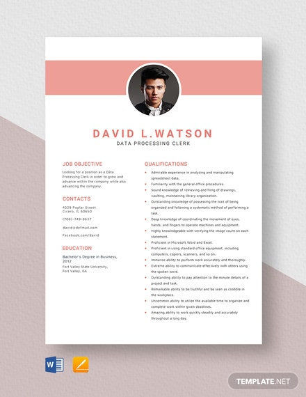 Data Processing Clerk Resume Template