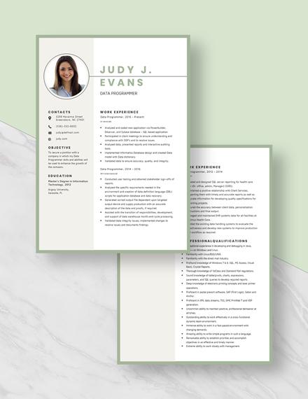 Data Programmer Resume Download