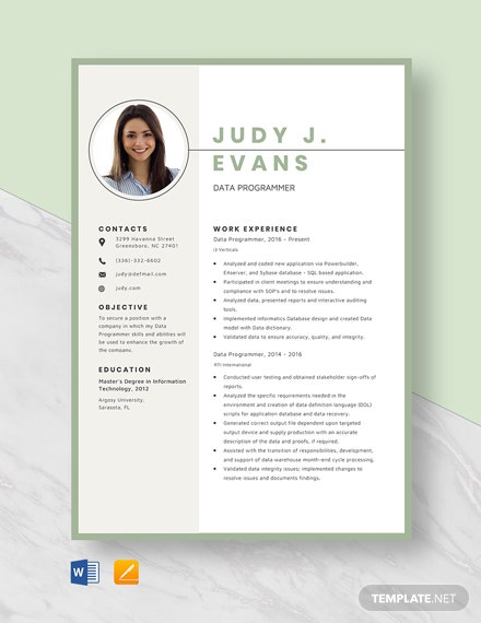 Data Programmer Resume Template