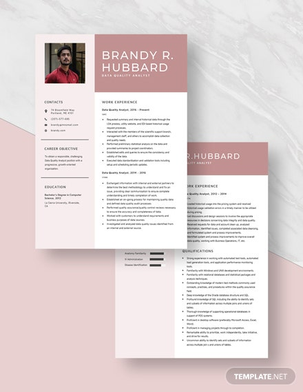 Data Quality Analyst Resume Download