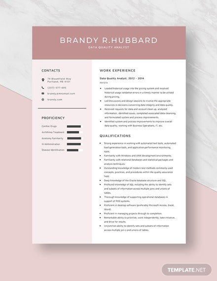 Data Quality Analyst Resume Template