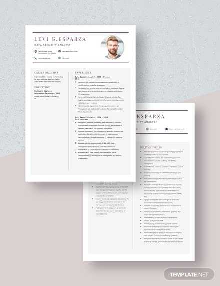 Data Security Analyst Resume Download