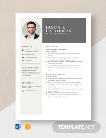 Delphi Developer Resume Template