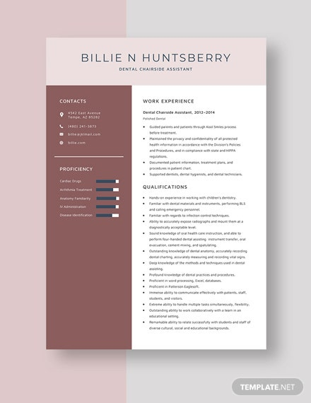 Dental Chairside Assistant Resume Template