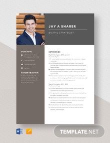 Digital Strategist Resume Template