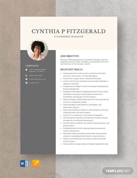 ECommerce Manager Resume Template
