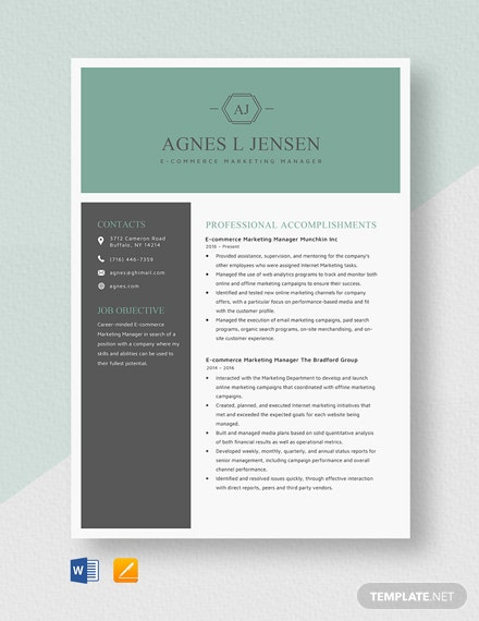 Ecommerce Marketing Manager Resume Template