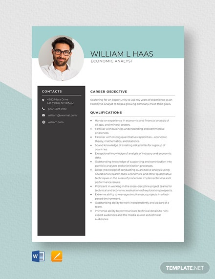 Economic Analyst Resume Template