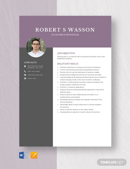 Economics Professor Resume Template