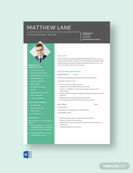 Free Account Manager Resume Template