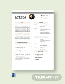 Free Web Application Developer Resume Template