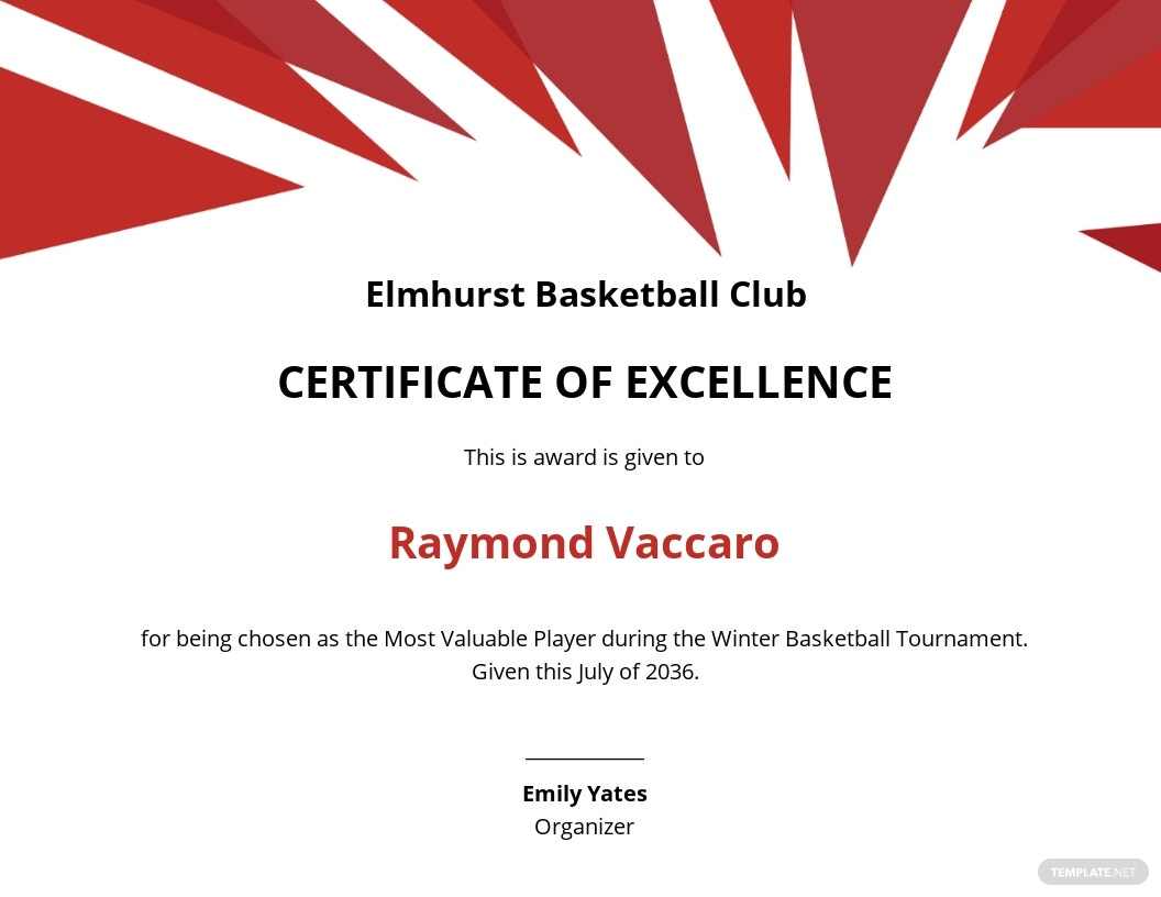 Excellence Certificate for Basketball Template