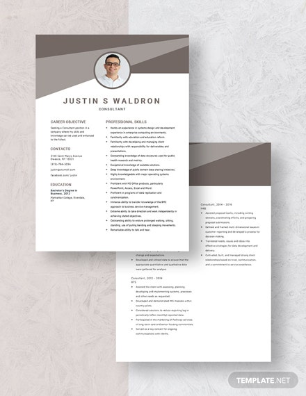Consultant Resume Download