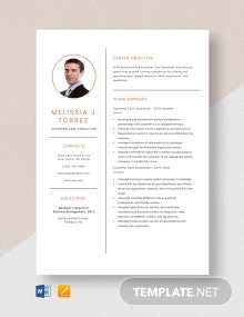 Customer Care Consultant Resume Template